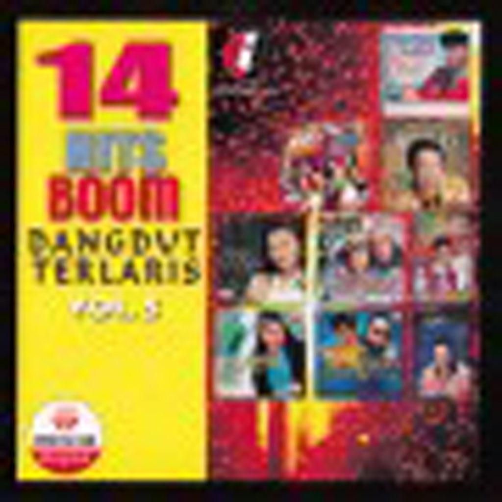 14 Hits Boom Dangdut Terlaris VOL 5 VCD 65149 (Front)